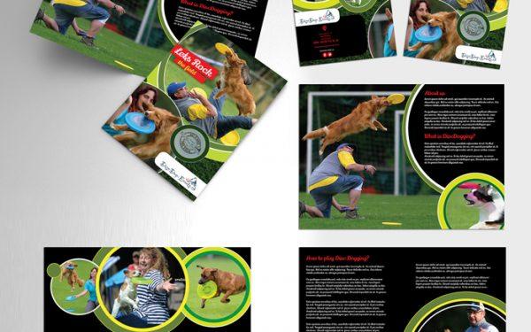 Disc Dog Events Brochure